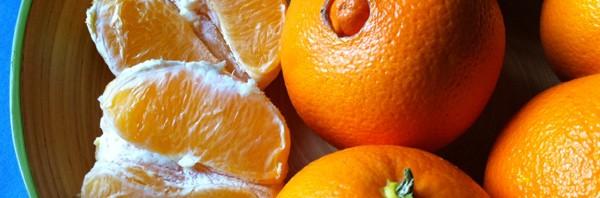 Las Naranjas Navel o de Ombligo y sus Extraordinarias Propiedades